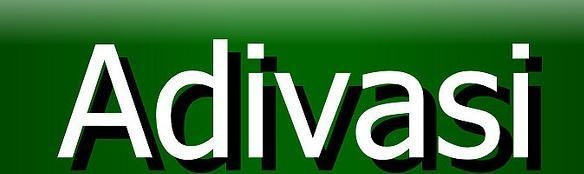 http://adivasi.ozg.in/_/rsrc/1356338411141/home/Adivasi.jpg